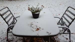 As I wrote this post, it snowed! My, my. Seems early.
